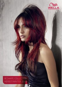 TN_A11_0101225_Beauty_Wella_Trend_Collection_A_W_2014_4